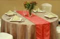 Where to rent CHAIR SASH, ORGANZA in Cleveland OH
